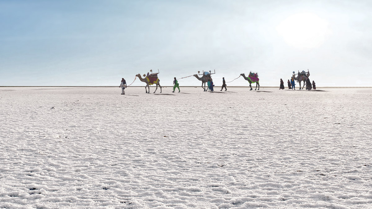visit white rann dot com A 3-Minute Guide To Kutch Rann Utsav